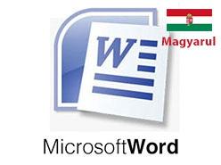 curs online microsoft word limba maghiara