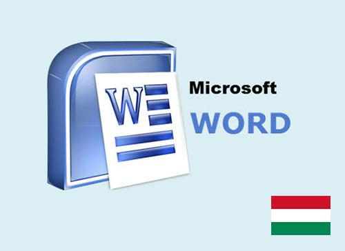 curs online microsoft word maghiara